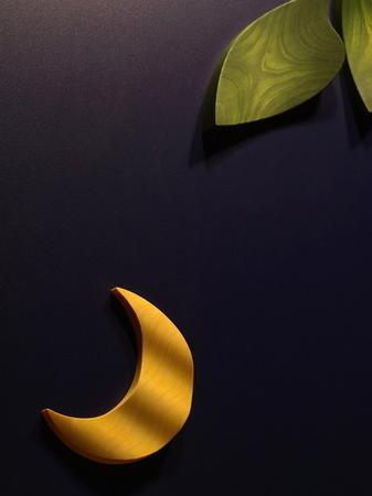 008、木の月と葉.jpg
